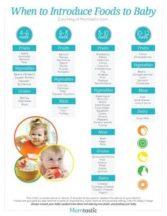 Solid Food Chart for Babies Aged 4 months through 12 months - Find age appropriate foods for all baby food stages on this simple to read baby food chart