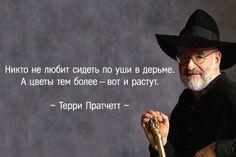 Чертовски остроумные цитаты Терри Пратчетта: