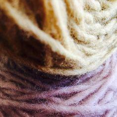Natural Dye for Wool Fiber, Lavender: Botanical Interests Marigold Flower, Lavender Flowers, Flower Petals, Bachelor Button Flowers, Bachelor Buttons, Grocery Store, Berries, Seeds, Easy Meals