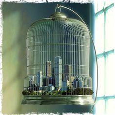 La libertà è un punto di vista rispetto a un involucro immaginario che circonda il nostro mondo. Certe volte ciò che chiamiamo libertà è il conforto di essere coccolati tra le sbarre delle nostre gabbie dorate. (Dido)