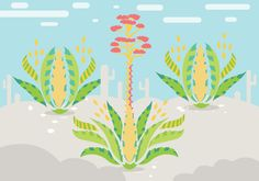 Maguey Illustration Vector -   Maguey with beautiful illustrations can be downloaded here  - https://www.welovesolo.com/maguey-illustration-vector/?utm_source=PN&utm_medium=weloveso80%40gmail.com&utm_campaign=SNAP%2Bfrom%2BWeLoveSoLo