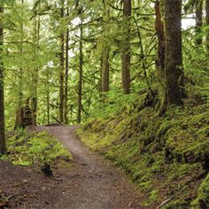 Photo Tips: Capturing a Trailscape — Washington Trails Association