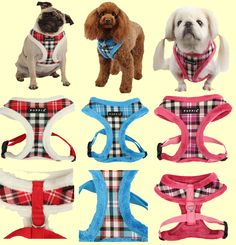 Uptown 2 (Winter) harness from Puppia!  Warm and very fashionable. Retails for $24.00 but is on sale now for only $20.00 at www.puppiaharness.ca Donald Duck, Dog Cat, Disney Characters, Fictional Characters, Warm, Winter, Dogs, Fashion, Winter Time