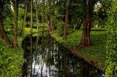 River bend by Wojciech Toman on 500px