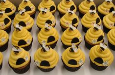 Bumble Bee Beehive Cupcakes by JMC Custom Cakes Beehive Cupcakes, Bumble Bee Cupcakes, Bee Cakes, Cupcake Cakes, Comida Baby Shower, Bumble Bee Birthday, Mommy To Bee, Let Them Eat Cake, Cake Decorating