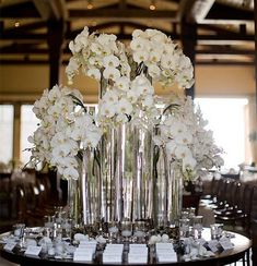 White Phalaenopsis Orchids ...something like this for dessert table or champagne table?