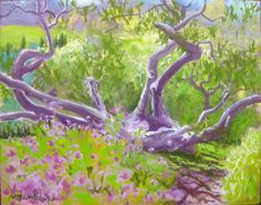 Maui Plein Air Painting Kula Botanical Garden Tree
