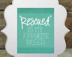 Image from http://quotespictures.com/wp-content/uploads/2014/03/rescued-is-my-favorite-breed.jpg.