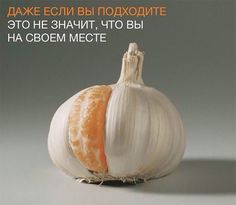 Максим Голицын