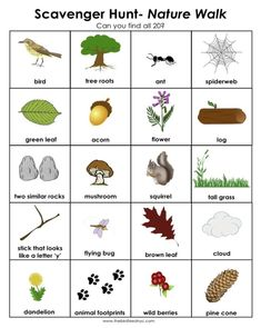 "Scavenger Hunt for Kids-Nature Walk We did this about a month ago and was a huge hit!  We are going to Jester Park again tomorrow and doing it again.  It really made the kids slow down and ""see"" nature. by megan"