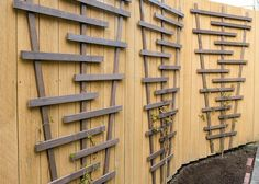 Check out these tutorials and learn how to build a chic and easy DIY garden trellis! (Or two!) Use a trellis for vines, veggies and some trees and shrubs!