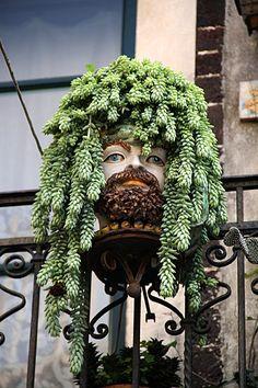 Views of Taormina Succulent hair - Green HeadSucculent hair - Green Head Abstract Sculpture, Wood Sculpture, Bronze Sculpture, Metal Sculptures, Face Planters, Flower Planters, Small Balcony Decor, Face Mug, Ceramic Painting