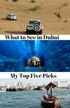 Dubai is a diverse city so I've put together some must-dos which showcase five different characteristics of the city and its surroundings; nature, gastronomy, history, culture and, of course, shopping. So here's my top five - what to see and do in Dubai...