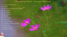 Thank you for visiting Music and Relax channel I wish you a happy and beautiful life around you Tracklist: Garden OF Dreams Infinie Manoli. C Major, Music Songs, Life Is Beautiful, Piano, Passion, Album, Life Is Good, Pianos, Card Book