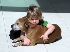 """A Dog's Purpose According to a 6 Year Old:  He said, """"People are born so that they can learn how to live a good life – like loving everybody all the time and being nice, right?""""    The six-year-old continued, """"Well, dogs already know how to do that, so they don't have to stay as long.""""  True"""