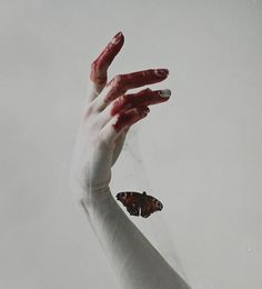 "sous-mon-ciel: "" Natalia Drepina Photography """