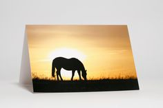 Horse at Sunset, light box photo