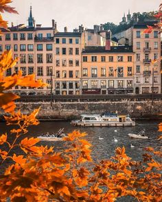 Fall in Lyon, France by Alex Shar Lyon France, France Europe, France Travel, France Photography, Nature Photography, Corsica, France Craft, Destinations D'europe, Lyon City