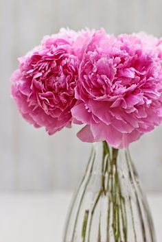 DIY Flower Tips and Inspiration-# 3- Peonies-Ingrid Henningsson-Of Spring and Summer