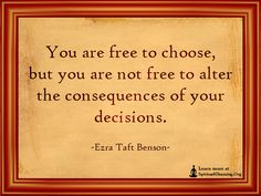 You are free to choose, but you are not free to alter the consequences of your decisions