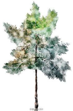 水彩风格的手绘树7