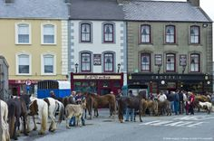 Image Detail for - Horse Fair in Kilrush, County Clare, Ireland