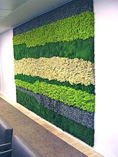 """Декор стен растениями в разных цветах. Мы сделаем интерьер """"живым""""! www.greentree38.ru"""