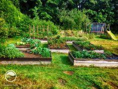 Typ na zeleninovou zahrádku - Zahrada roku 2014 - stříbrná medaile | Atelier Flera
