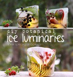 DIY Botanical Ice Luminaries | http://homestead-and-survival.com/diy-botanical-ice-luminaries/ | Botanical ice luminaries are a lovely way to blend nature's beauty with a medium that creates an enchanting source of light.