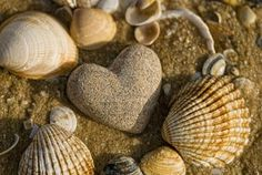 Picture of stone heart and shells on the beach stock photo, images and stock photography. I Love Heart, With All My Heart, Happy Heart, Love Is All, Crazy Heart, Grateful Heart, Heart In Nature, Heart Art, Heart Shaped Rocks
