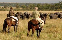 Un safari à cheval au Kenya dans le Maasaî Mara #kenya #safari #chevaux