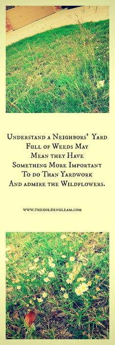 More important than a perfect yard...