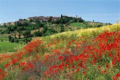 Sotto il sole della Toscana è un film di Audrey Wells del 2003 con protagonista Diane Lane. Il film è basato sul libro omonimo della scrittrice Frances Mayes.