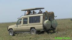 www.antelopesafaris.com Tour Guide, Recreational Vehicles, Safari, Tours, Campers, Single Wide