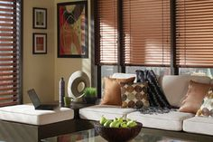Hunter Douglas Contemporary Window Treatments