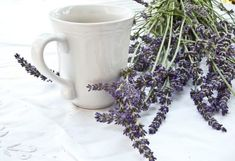 Lavender mint, lavender chamomile, lavender berry — we'll show you how to make lavender tea in fresh, delicious ways. Lavender Syrup, Lavender Buds, Lavender Oil, Lavander, Best Matcha Tea, Best Herbal Tea, Herbal Teas, Lavender Benefits, Oil Benefits