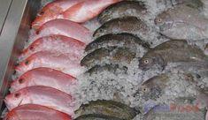 Philippine Fish Species - List of Common Fish in the Philippines Animals Name In English, Goldfish Types, Fish Chart, Oscar Fish, Aglio Olio, Potato Toppings, Fish Pie, Fish Stock, Pet Fish