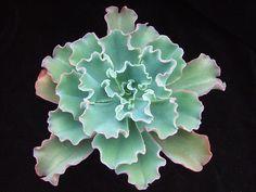 Echeveria 'Blue Rose', via Flickr. Cacti And Succulents, Planting Succulents, Planting Flowers, Cactus Care, Cactus Flower, Echeveria, Air Plants, Garden Plants, Cactus Y Suculentas