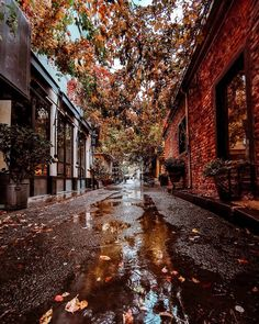 What if winter is not a place outside? Autumn Aesthetic, City Aesthetic, Autumn Scenery, Autumn Cozy, All Nature, Autumn Photography, Dark Art Photography, Fall Wallpaper, Best Seasons