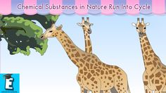 Chemical substances in nature run into cycle by Educational Program For ...