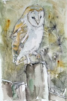 An original watercolour and pen, wildlife bird portrait painting of a fabulous barn owl. This one off detailed piece of owl art measures 21cm X 29.5 cm, is sent mounted and in a plastic sleeve. If you would like a watercolour painting of a particular animal feel free to contact me. I will