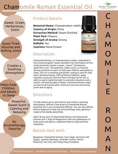 By: Diane Mishler, Certified Aromatherapist The plant that April's Oil of the Month comes from is well known in southeast Asia, Thailand, Indonesia and parts of China. Finger Root, also know… Essential Oil Chart, Plant Therapy Essential Oils, Essential Oils For Pain, Essential Oil Uses, Essential Oil Diffuser, Chamomile Essential Oil, Healthy Oils, Aromatherapy Oils, Massage Oil