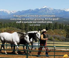 27 Ideas For Horse Training Quotes Natural Horsemanship Rodeo Quotes, Cowboy Quotes, Equestrian Quotes, Horse Sayings, Horse Girl, Horse Love, Inspirational Horse Quotes, Riding Quotes, Country Girl Quotes