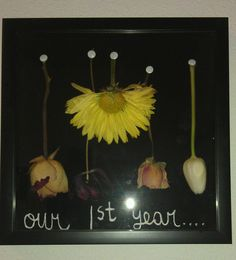 Took flowers I have kept that my boyfriend has given me over the year dried them and made a shadow box for them!