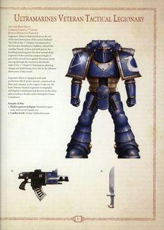 Ultramarine legion tactical veteran