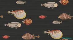 Tapeta ryby świat podwodny // wallpaper fish underwater // Cole & Son - Fornasetti II - Aquario 97/10048