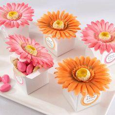 """""""Daisy Delight"""" Gerbera Daisy Favor Box (Set of 24)"""