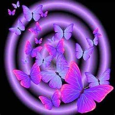 Beautiful Purple Art And Black Shades Of Magenta Erfly Flowers
