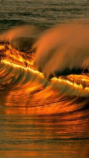 golden waves sunset at puerto escondido, mexico No Wave, The Ocean, Images Gif, Bing Images, All Nature, Am Meer, Ocean Waves, Ocean Sunset, Big Waves