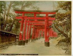 Киото. Тории. Храмовые ворота храма Инари Фусими